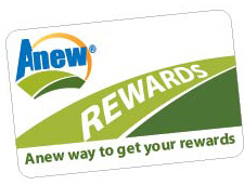 Anew Rewards Card032615